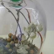 Cloche Jar by Carolyn Homework