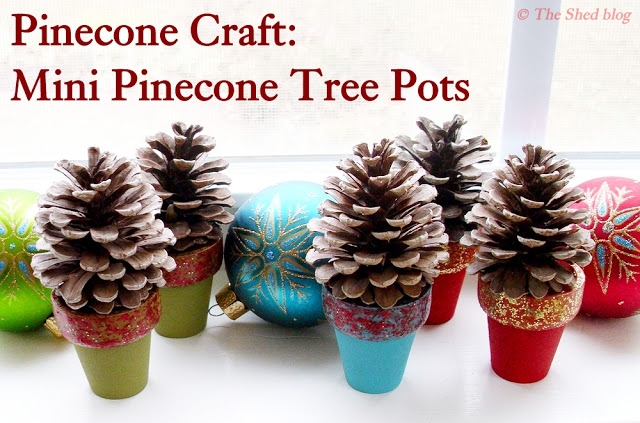 TheShed Pinecone tree pots