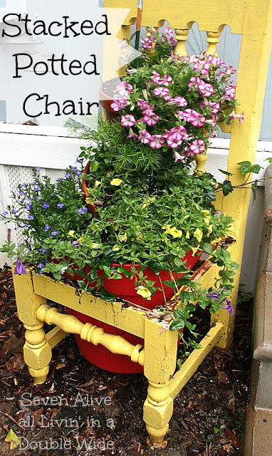 stacked potted chair plant - seven alive