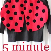 5 Minute Ladybug Costume on 30 Minute Crafts