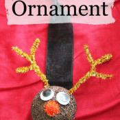Reindeer Ornament from Styrofoam Ball