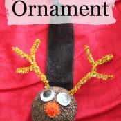 Reindeer Ornament from Styrofoam Ball