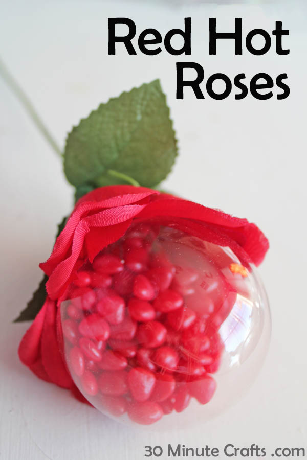 Simple Red Hot Roses