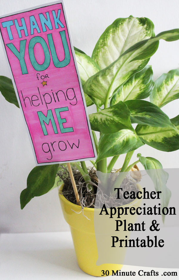Teacher Appreciation Plant and Printable