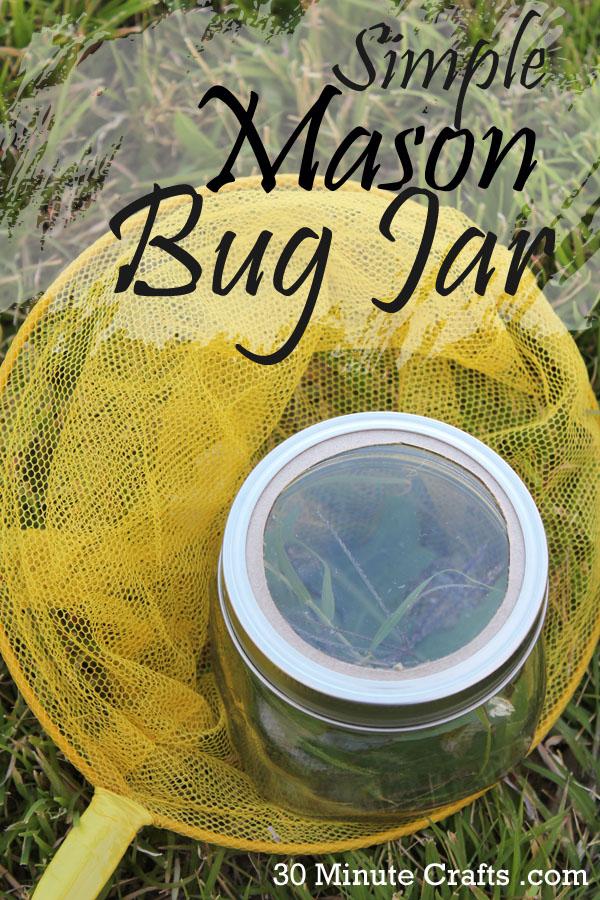 Simple Mason Bug Jar
