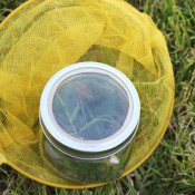 add a magnifying glass to a mason jar to make a bug jar