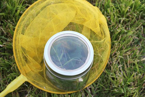 add a magnifying glass to a mason jar to make a bug jar