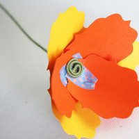 finished paper poppy
