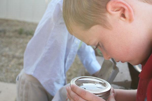 playing with the bug jar