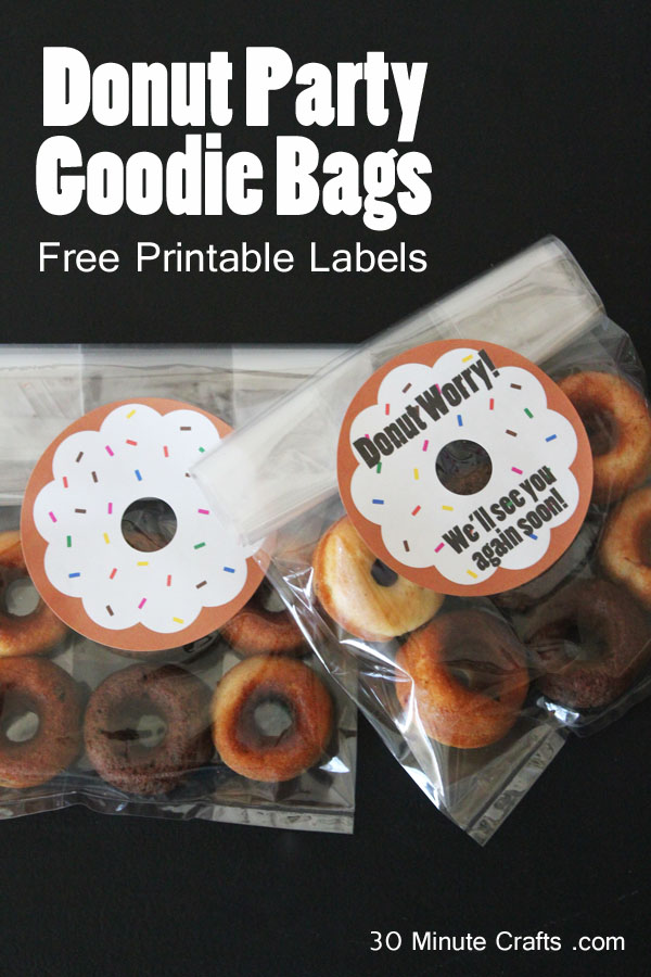 Donut Party Goodie Bags with Free Printable Labels
