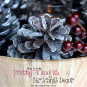 Pretty-Pinecones-for-Christmas-Square