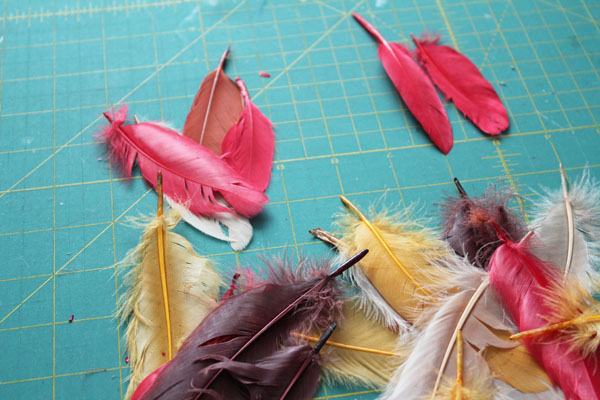 pick feathers