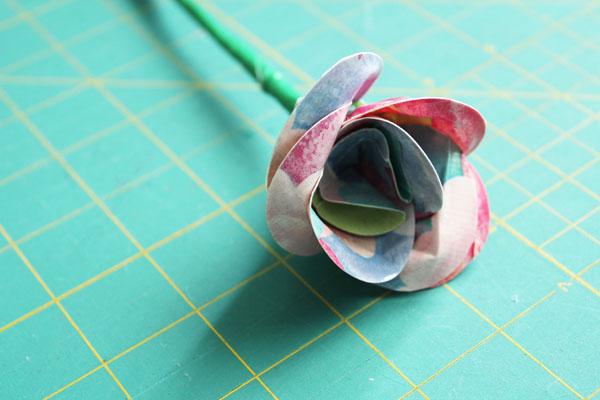 finished rose