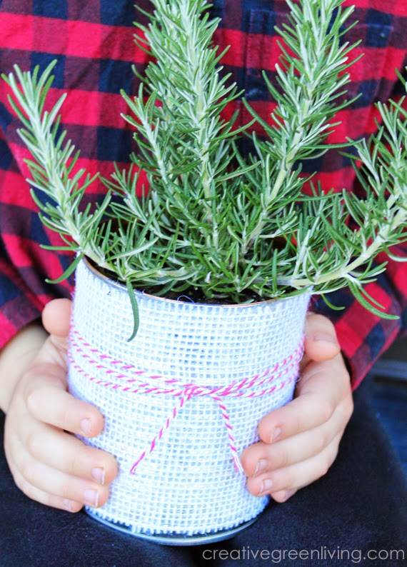 Awesome gift idea - make a cute planter with a recycled can, some burlap and baker's twine. Great teacher appriciation or hostess gift idea