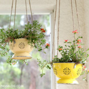 colander-planter creative savings blog