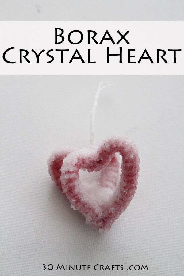 Crystal Heart - easy to make using borax from the grocery store, and pipe cleaners!