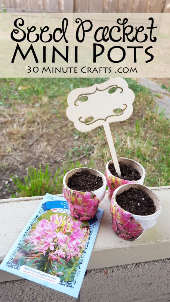 Easy to make Seed Packet Pots