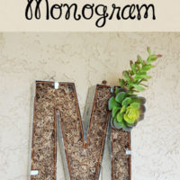 Simple-Succulent-Monogram