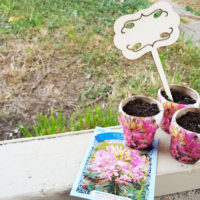 finished seed packet pots