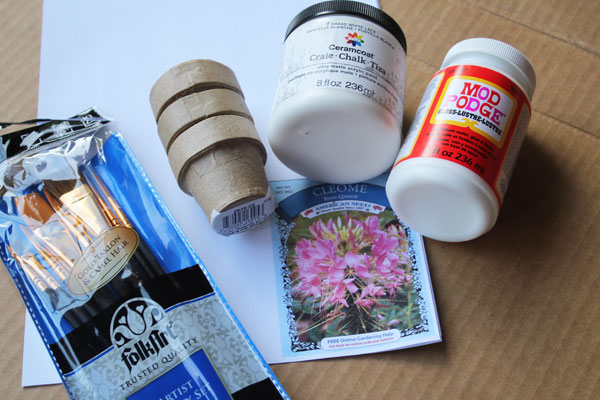 supplies for seed packet pot