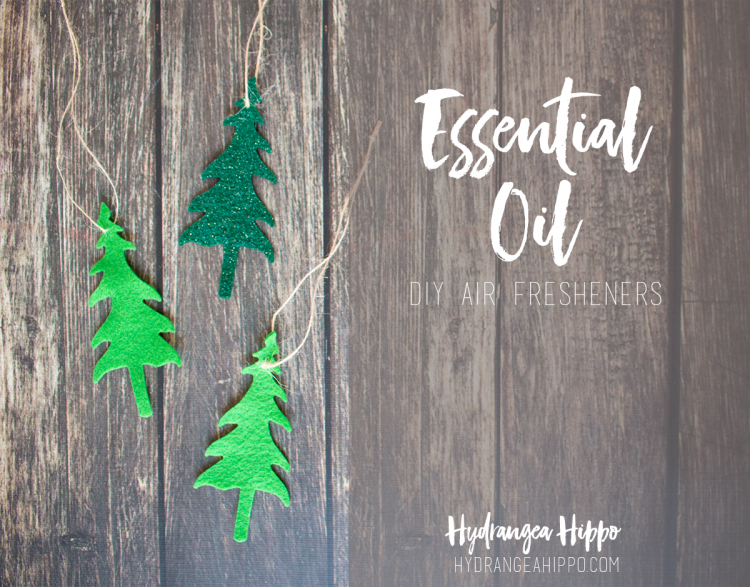 Essential-Oil-DIY-Air-Fresheners-by-Hydrangea-Hippo-750x587