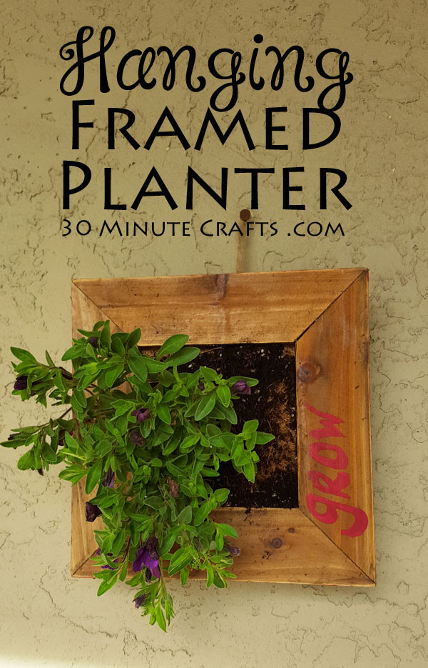 Hanging framed planter - add plants to your wall decor!