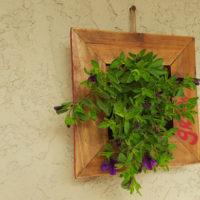 finished hanging planter