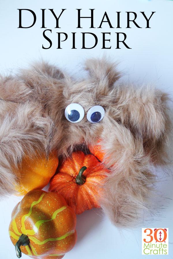 DIY Hairy Spider
