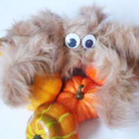 make a creepy hairy spider