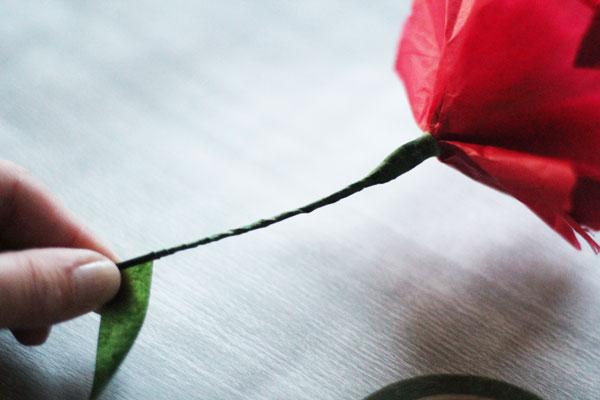 wrap stem