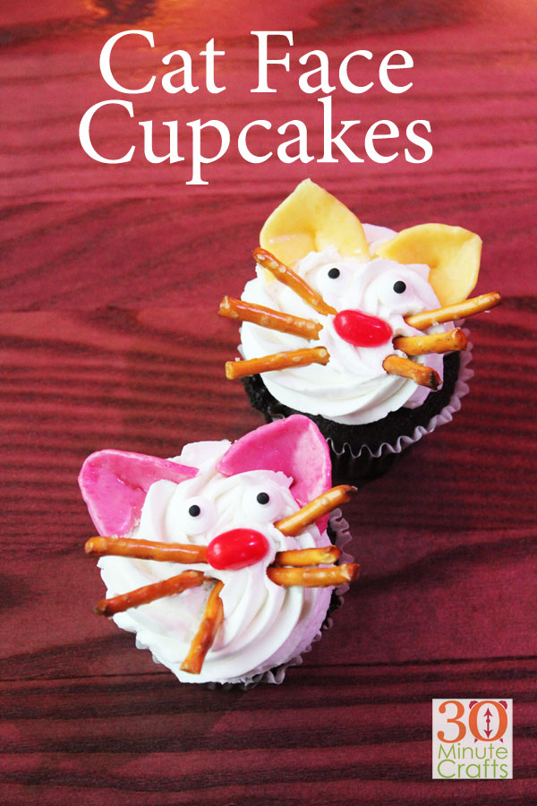 DIY Cat Face Cupcakes - Semi-homemade and quick to make with just a few supplies you may already have on hand!